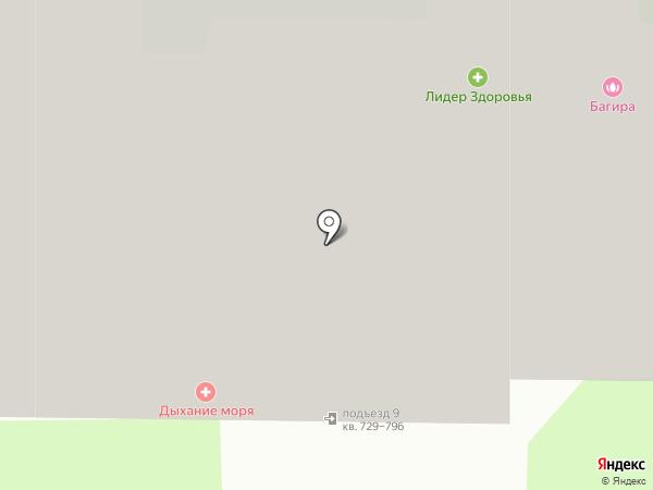 Багира на карте Химок