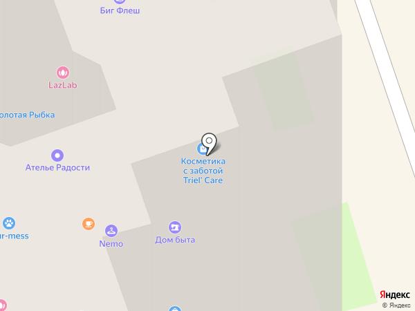ICON на карте Долгопрудного