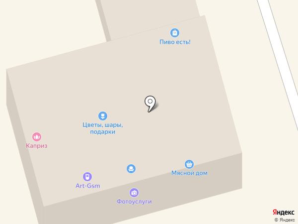 Zooplaza на карте Долгопрудного