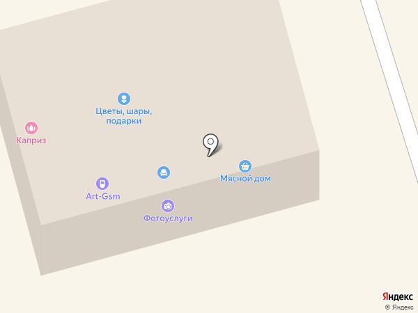 Art-gsm на карте Долгопрудного