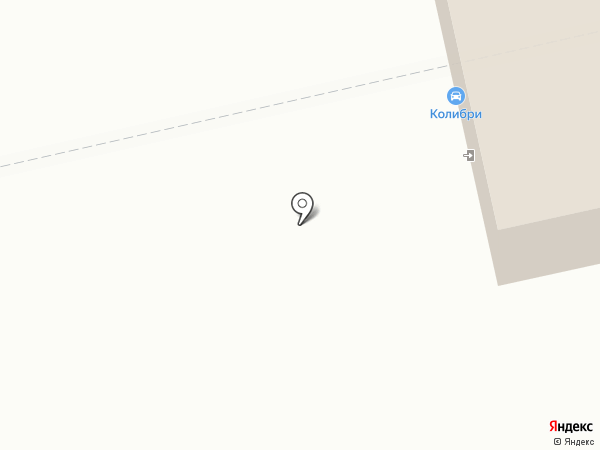 Колибри на карте Щёкино