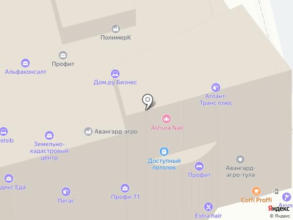 Профи-71 на карте Тулы