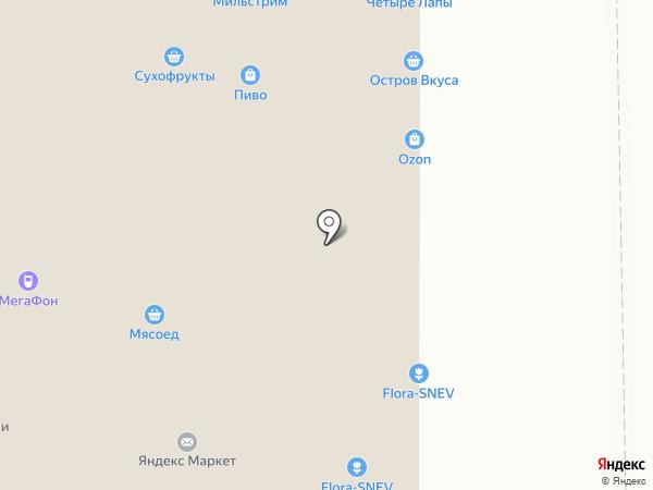 Эльмир на карте Москвы
