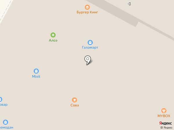 Сова на карте Тулы