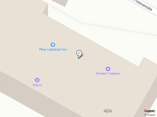 Любимчик на карте Тулы