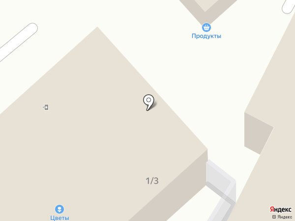 Визит на карте Видного