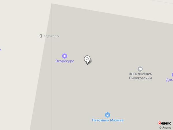 Пенный экспресс на карте Пирогово