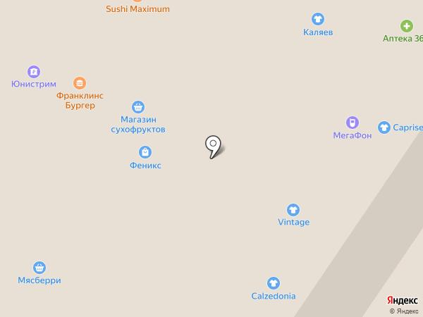 Сметана на карте Мытищ