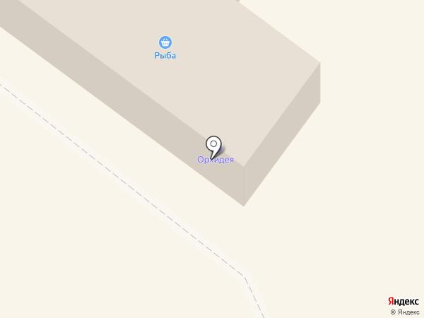 Чебуречная на карте Новороссийска
