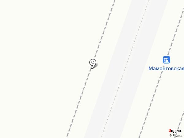 Мамонтовская на карте Пушкино