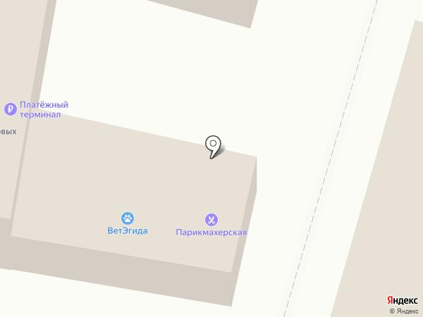 МТС на карте Пушкино