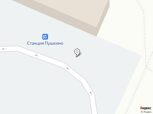 У Станции на карте Пушкино