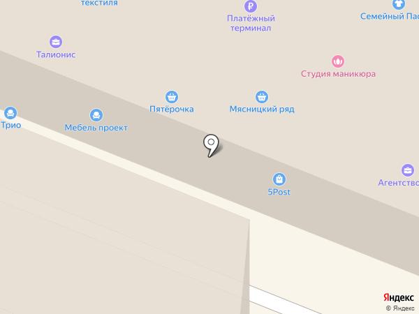 ТАЛИОНИС на карте Пушкино