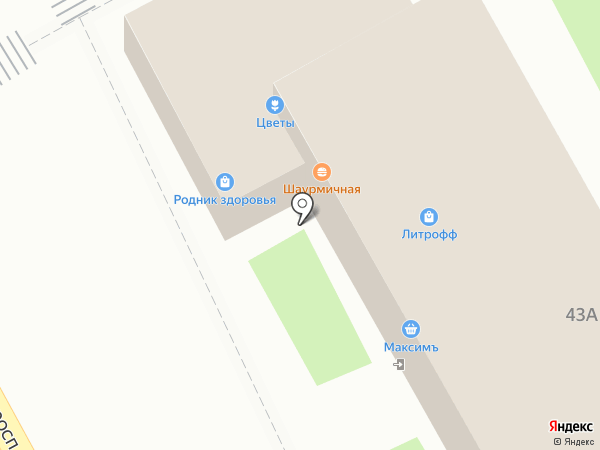 Родник здоровья на карте Пушкино