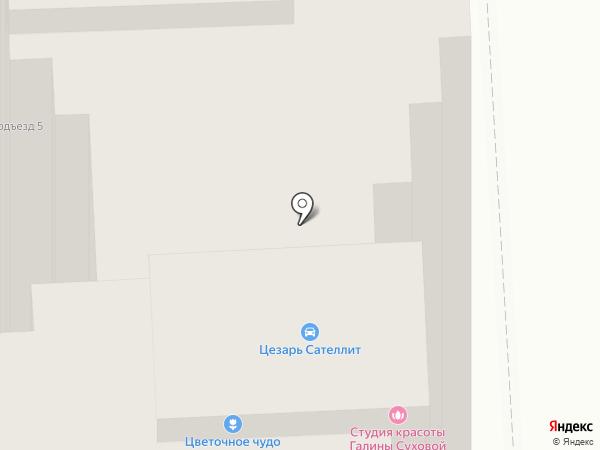 Салон оптики на карте Пушкино