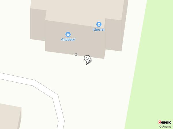 Ника на карте Пушкино