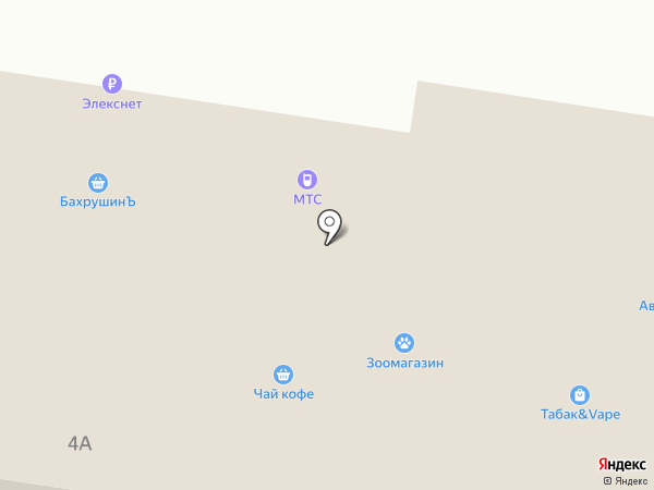 Золотой жасмин на карте Пушкино