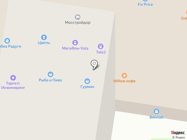 Винлаб на карте Пушкино