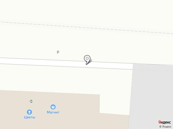 Терне на карте Балашихи