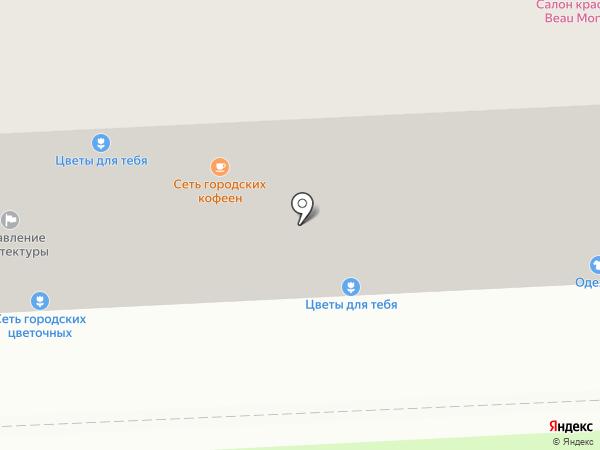 Станко-Метиз на карте Балашихи