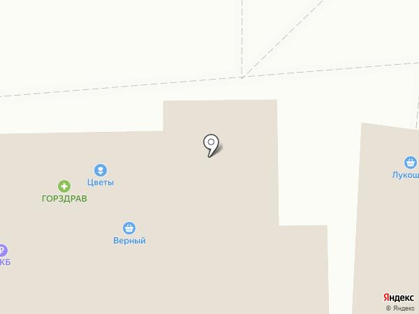 ГорЗдрав на карте Балашихи