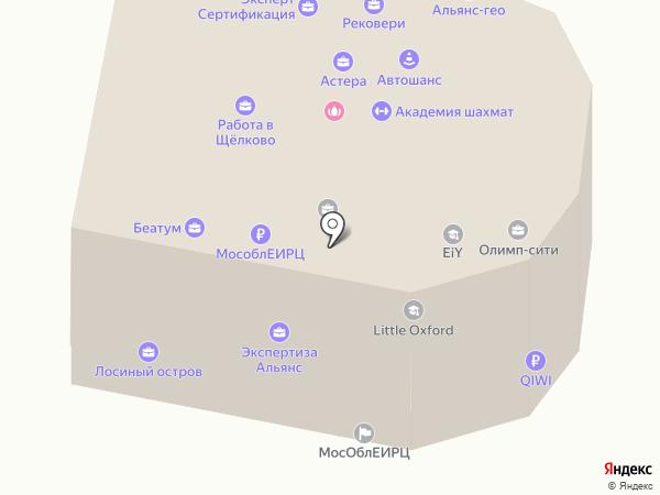 РеалТрастКонсалтинг на карте Щёлково