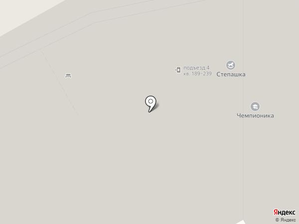 Центральная на карте Балашихи