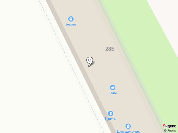 Валерия на карте Жуковского