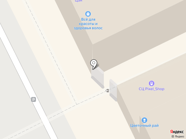 Орхидея на карте Жуковского