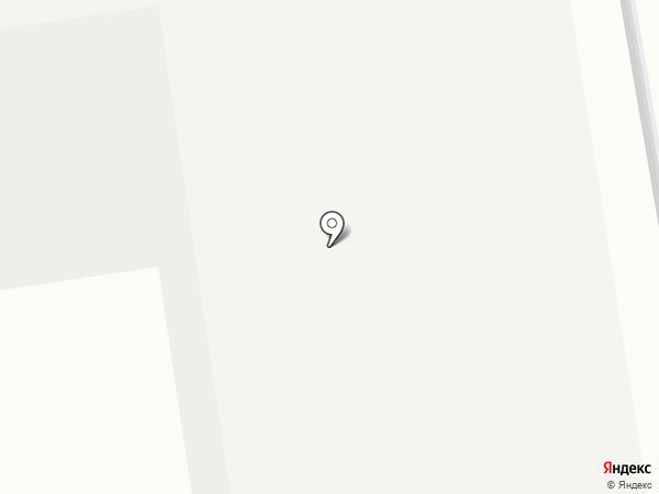 Венеция на карте Старой Купавны