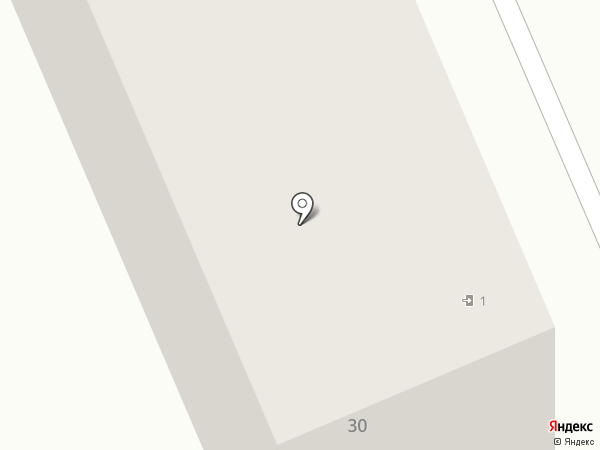 Турион на карте Старой Купавны