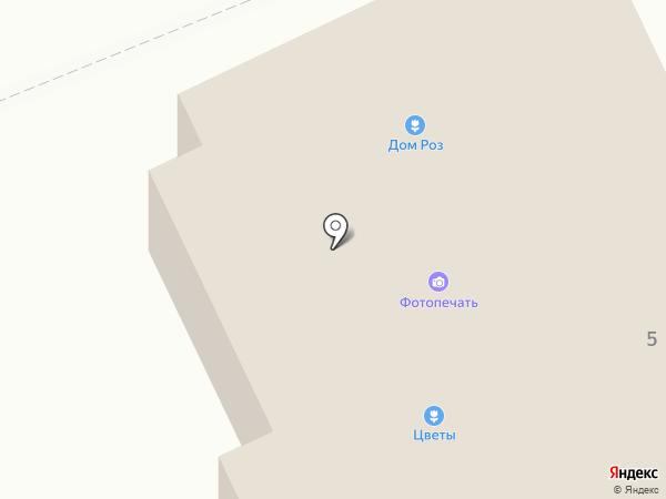 ДОМ РОЗ на карте Старой Купавны