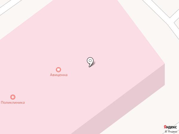 Авиценна на карте Старой Купавны