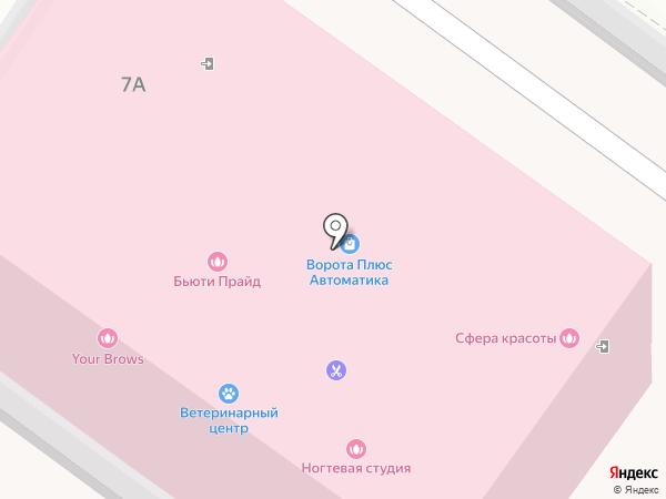 Ветеринарный лечебно-диагностический центр на карте Раменского