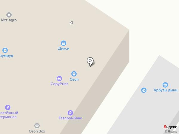 Дикси на карте Раменского