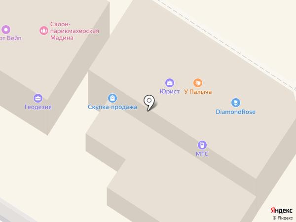 У Палыча на карте Раменского