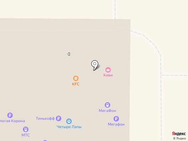 4 лапы на карте Новомосковска