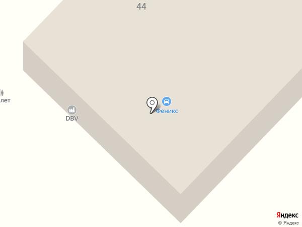 Феникс на карте Энема
