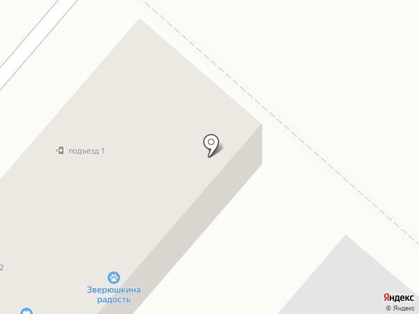 Золушка на карте Энема