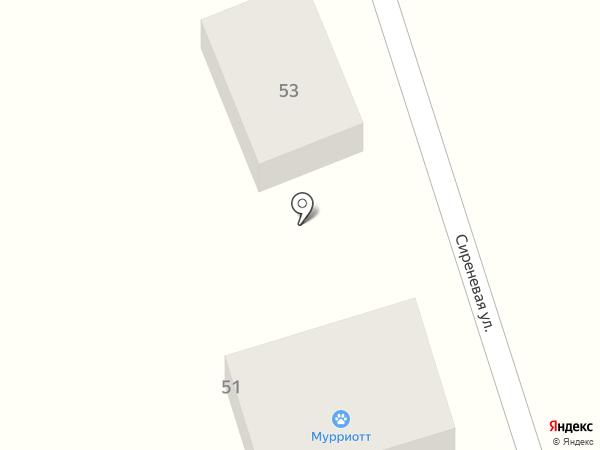 Кошачий Отель на карте Перекатного
