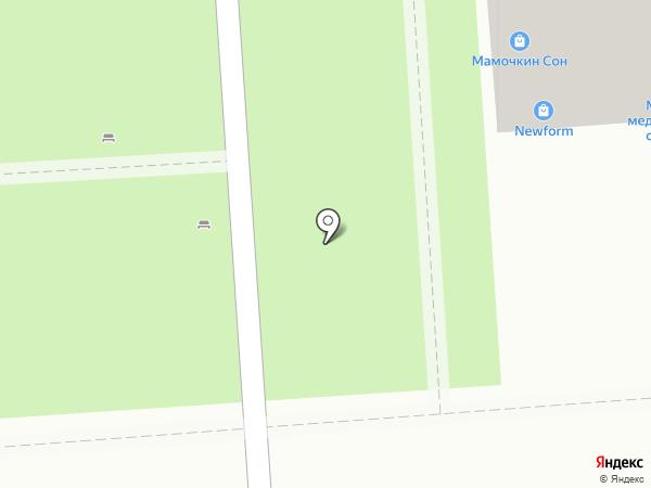 Расчёска на карте Воронежа