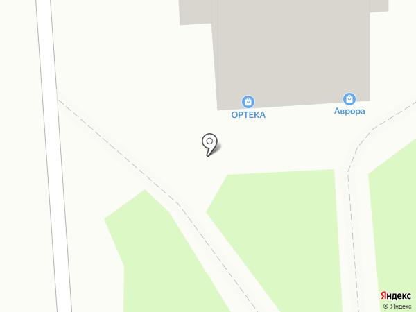 Аврора на карте Воронежа