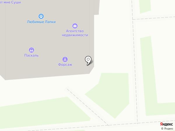 Олимпик на карте Воронежа
