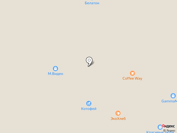 Хоровод на карте Воронежа