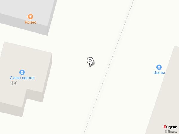 Алина на карте Новой Усмани