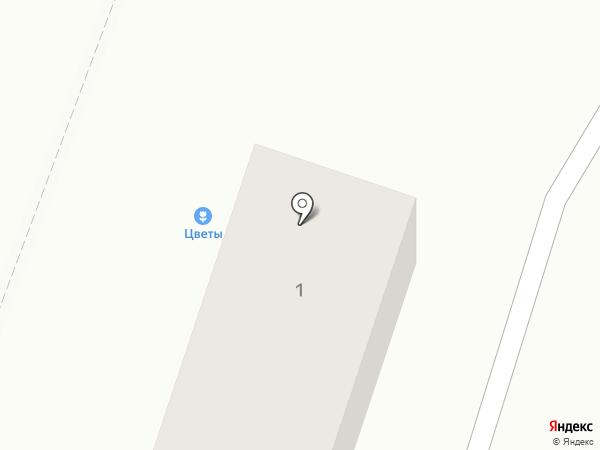 Посольство чистоты на карте Новой Усмани