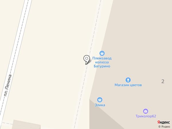 Племзавод колхоза Батурино, СПК на карте Рыбного