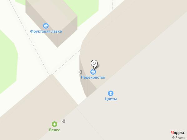 Анютины глазки на карте Липецка