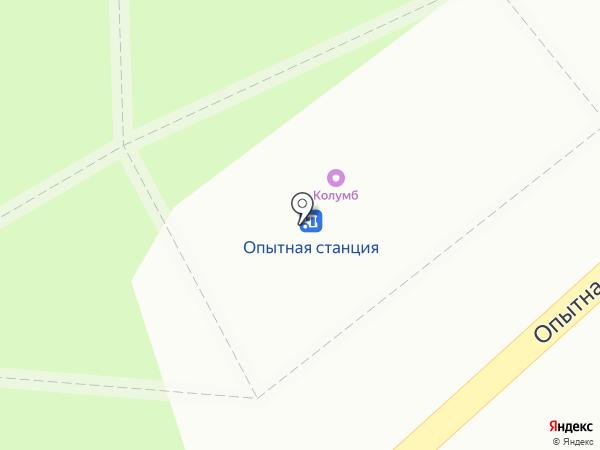 Элика на карте Липецка