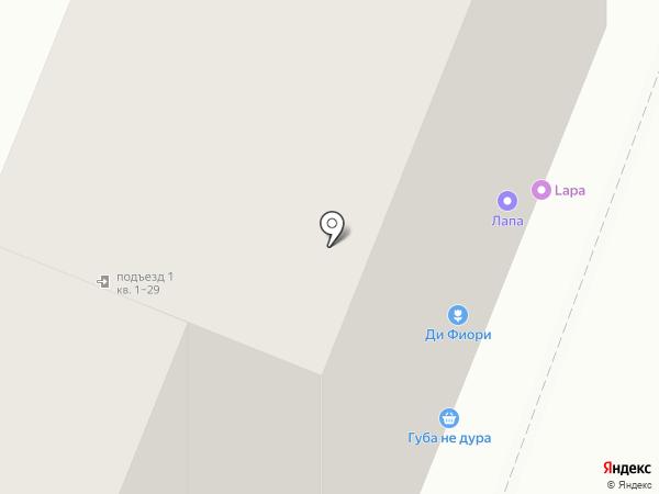 Аист на карте Липецка